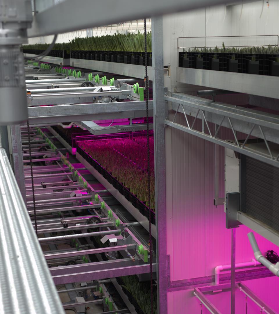 wat is vertical farming