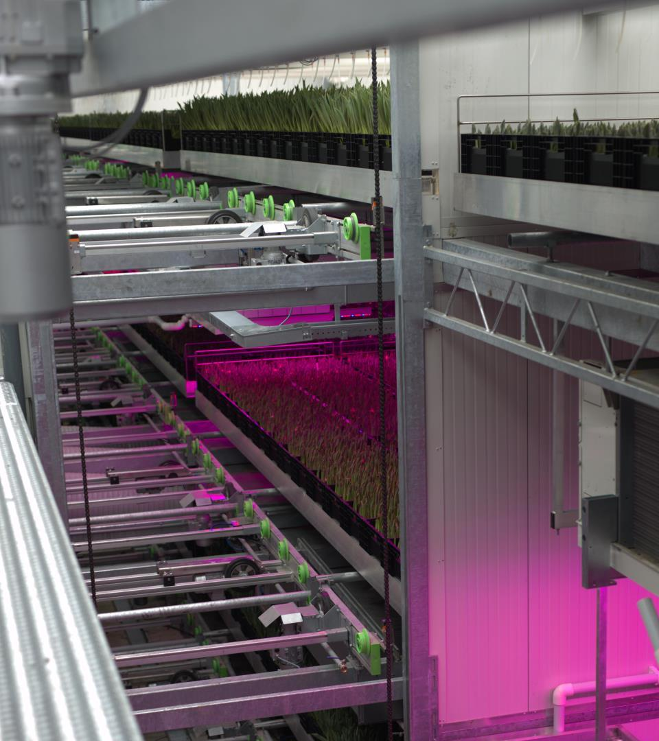 voordelen vertical farming